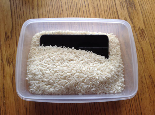 phone_in_rice